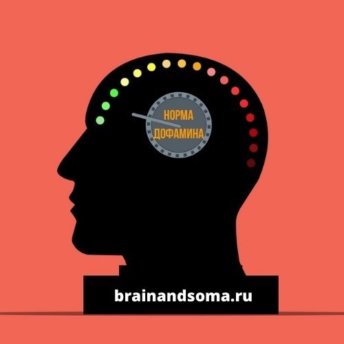 как повысить уровень дофамина в организме